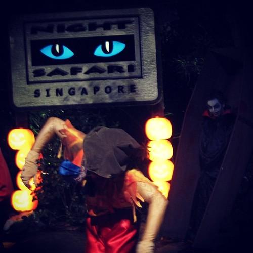 Night Safari #Halloween #singapore by @MySoDotCom