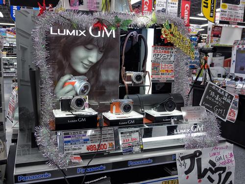 lumix gm endcap