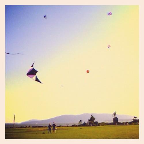 Kites by @MySoDotCom