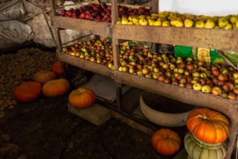 Apples, pumpkins and potatoes