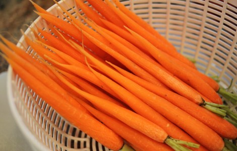 Baby Carrots ready for the butter treatment