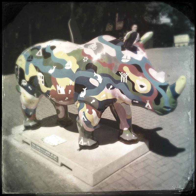 Go Rhinos: RhinOSeros