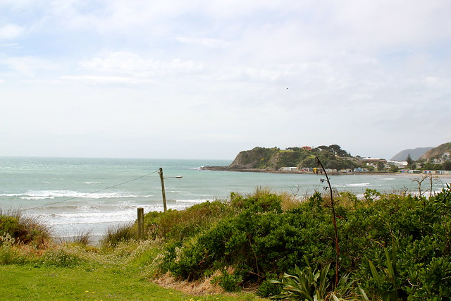 Saturday: eating lunch by Titahi Bay