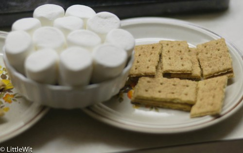 s'mores and graham crackers, ready to go