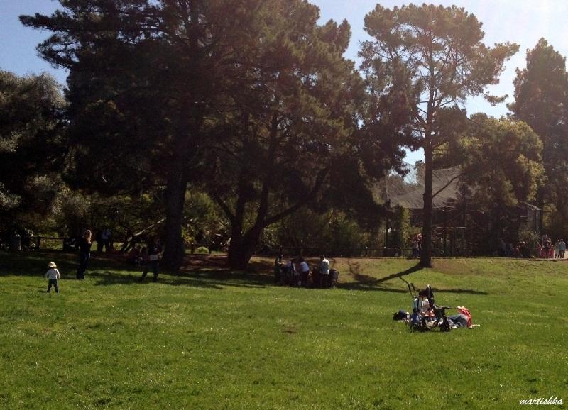 Oakland Zoo (5)