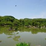 Carmina Japo?n, Kyoto 03