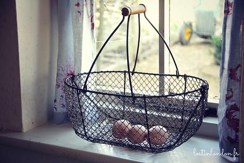 eggs window