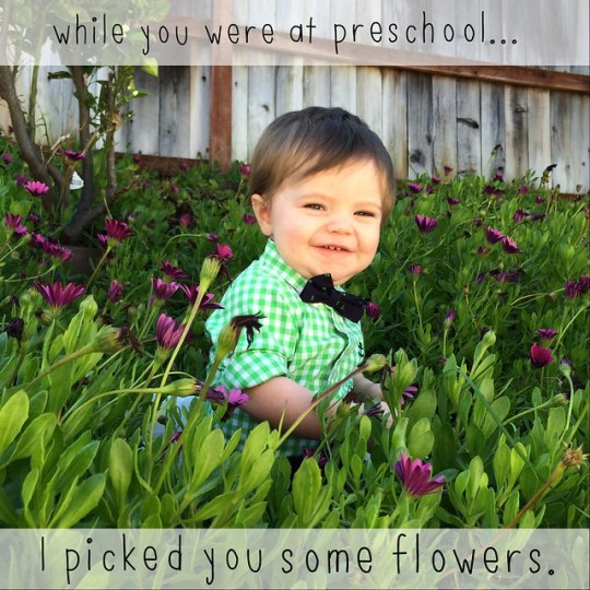 while you were at preschool I picked you some flowers