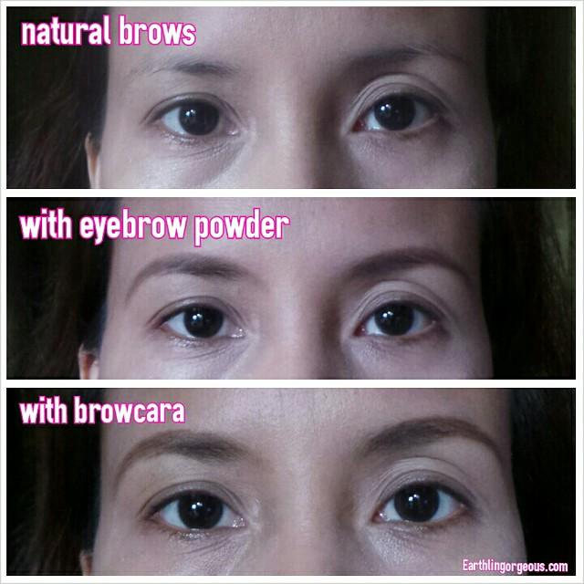 Makeup Factory Eyebrow Powder and Browcara review