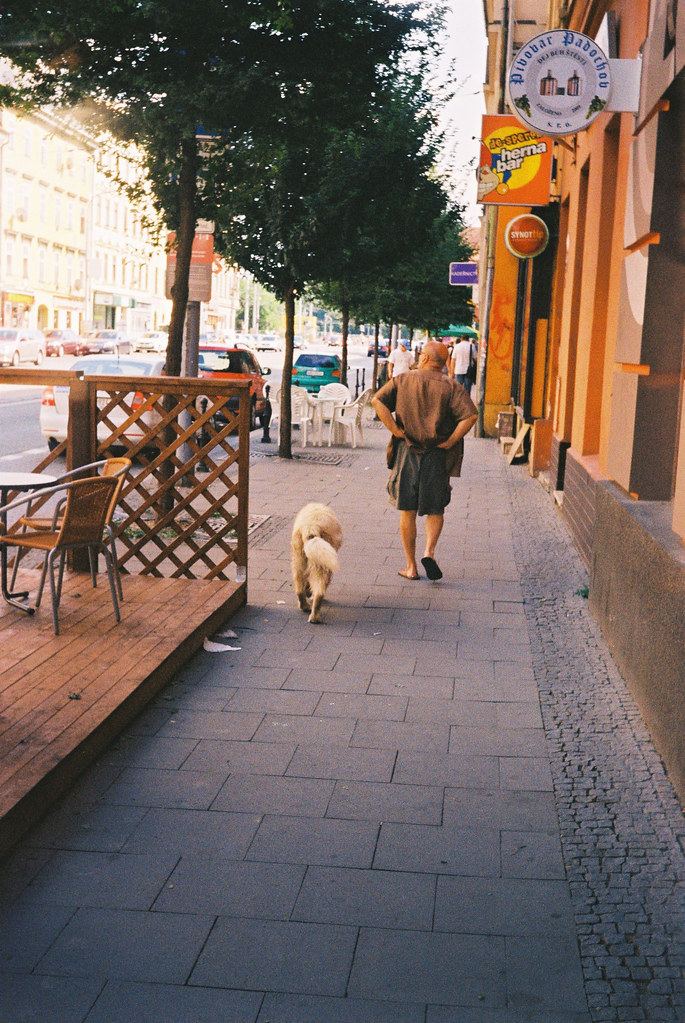Man and Dog (redscale film)