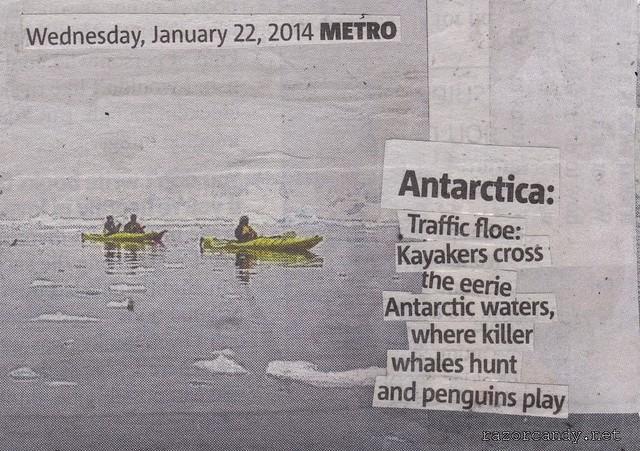 Antarctica Kayakers (3)