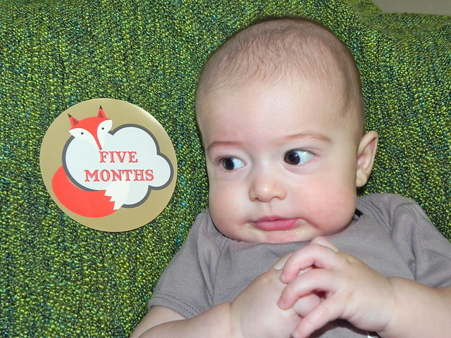 Will, five months