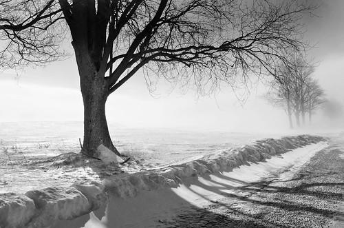 Winter's Wrath by jumpinjimmyjava