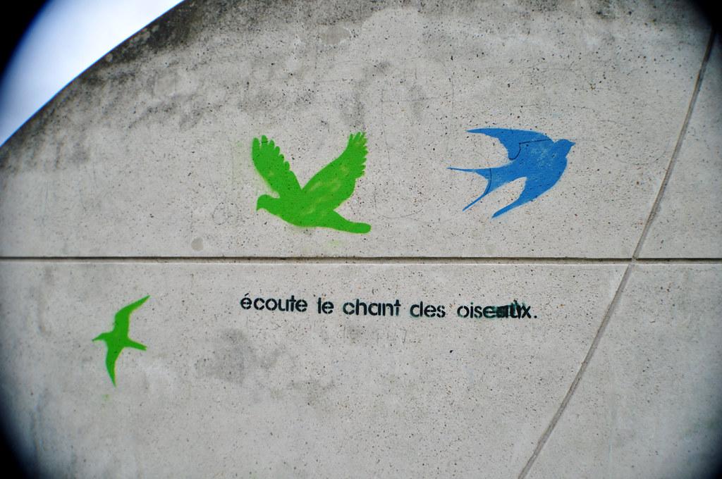 écoute le chant des oiseaux