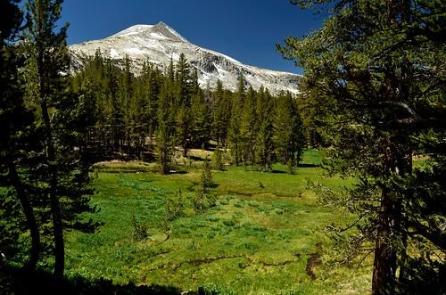 Mono Pass Trail 03