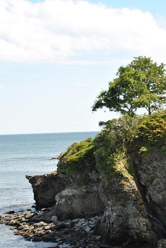 Along the Cliff Walk