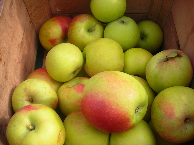 Baldwin apples