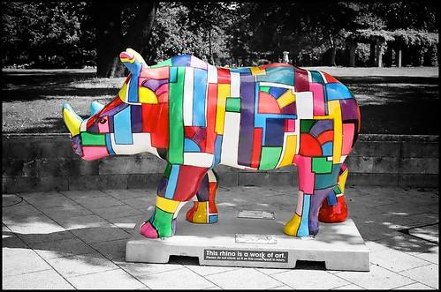 Go Rhinos:Augustus by Davidap2009