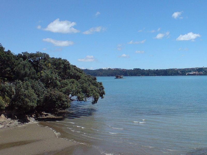 newzealand08g