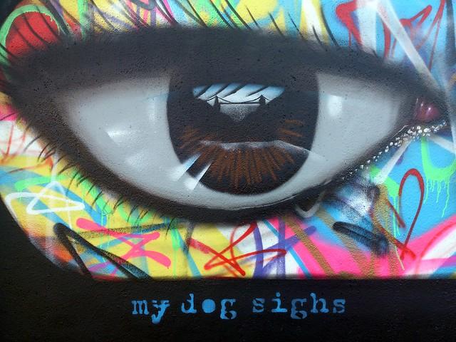 My Dog Sighs - Bristol Can