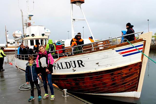 Avistar ballenas en Islandia
