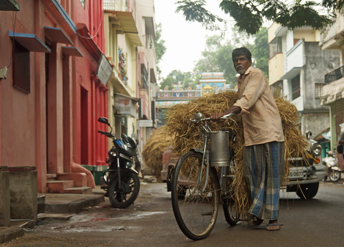 Hay on a bike