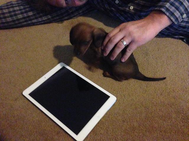 Big as an iPad