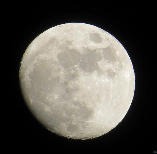 Luna-IMG_0067
