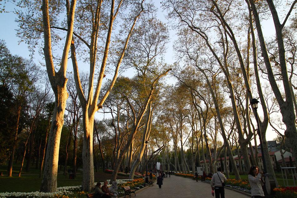 Istanbul - Gulhane Park Sunset