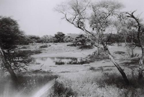 Onguma Reserve