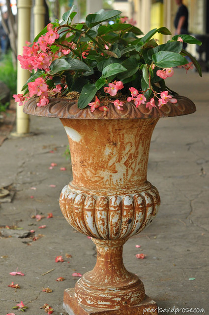fredburg_vintage_planter_web