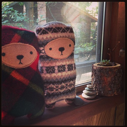 bears in cabin