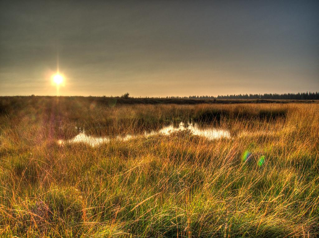 A HDR autumn evening