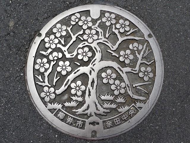 Yanai Yamaguchi, manhole cover (山口県柳井市のマンホール)