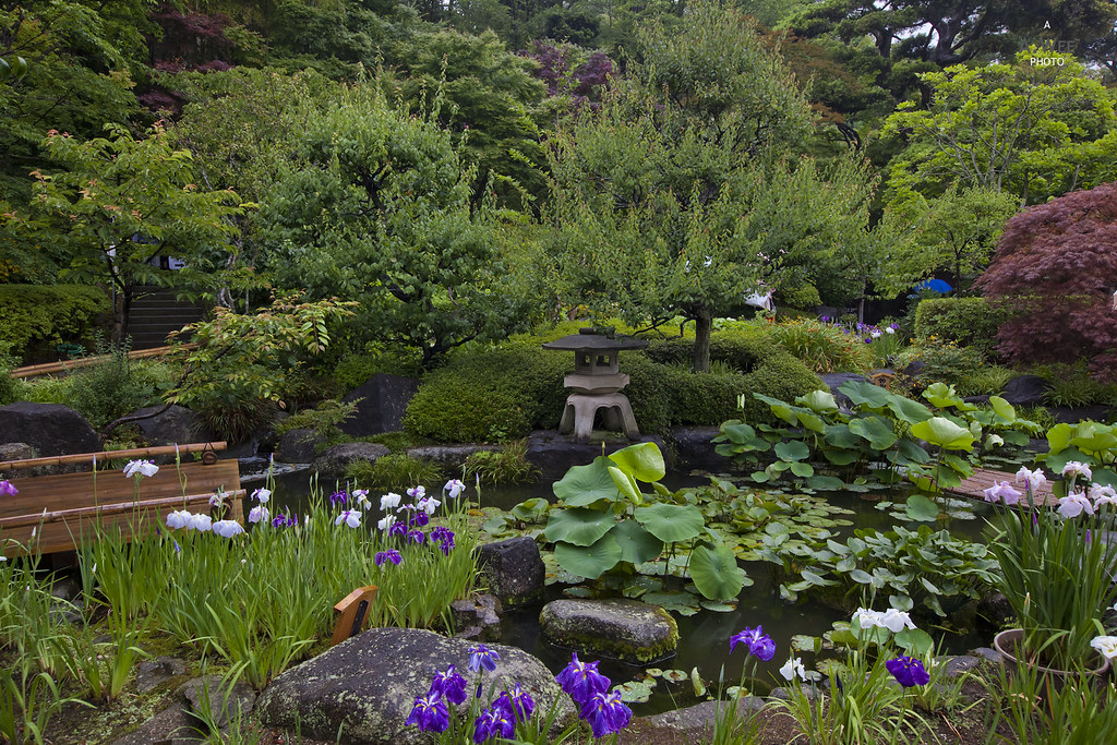 Gardens of Hase-dera