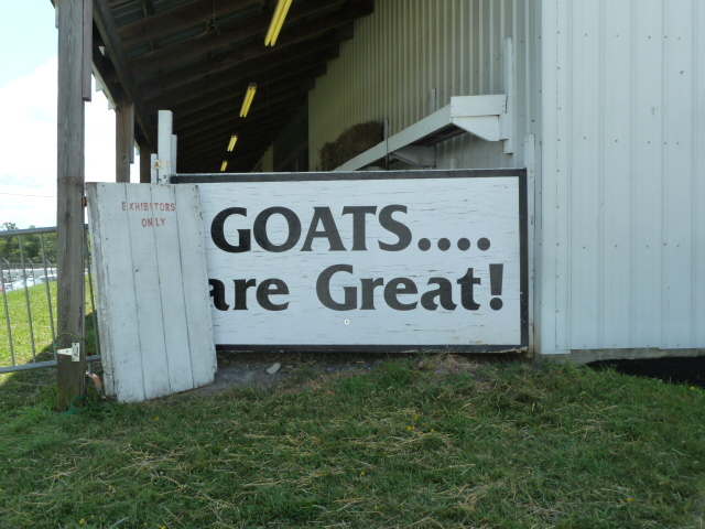 Goats are great!