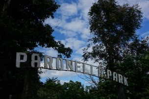 Mena Creek - Paronella Park