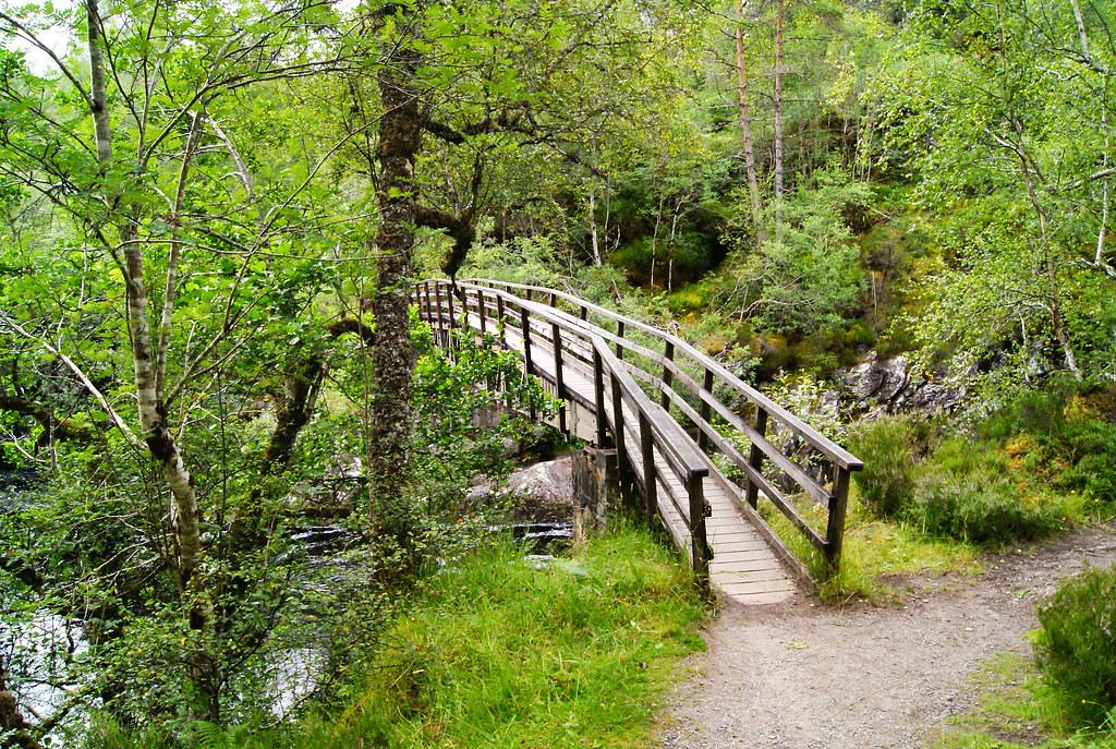 Dog Falls trail