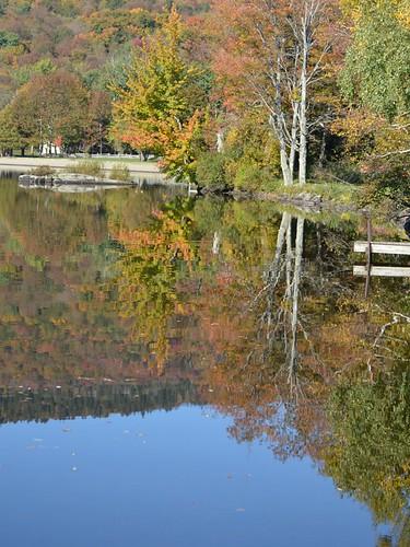 elmore reflection