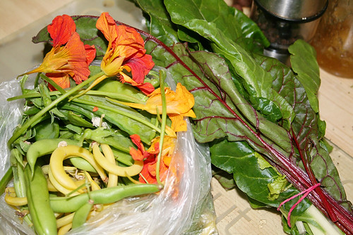 Photo of chard, snow peas, nasturtium flowers and two types of beans