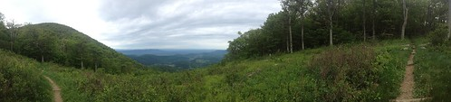 View from Little Hogback Overlook