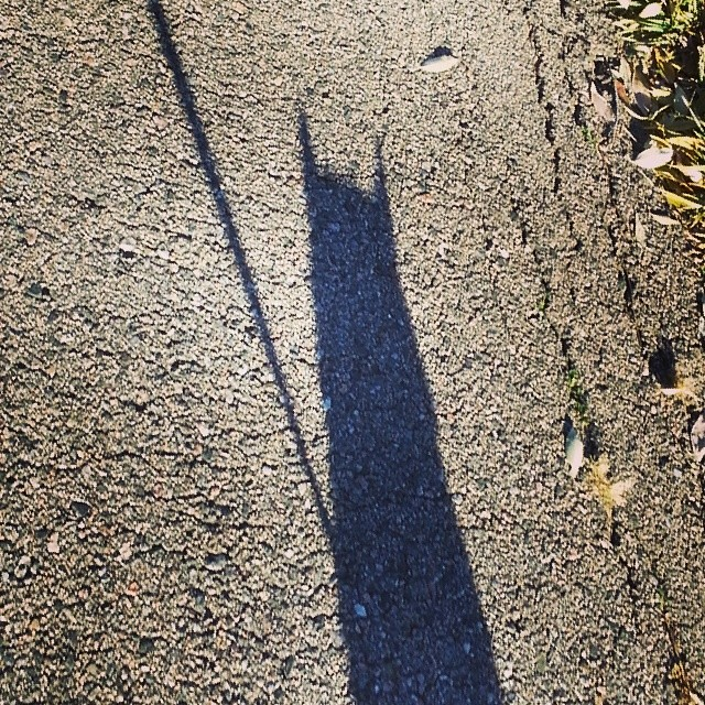 Walking my little #batman #shadow.