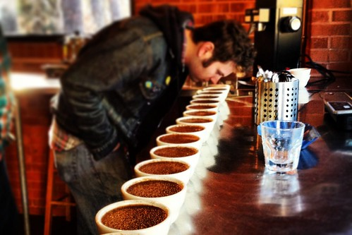 Counter Culture Coffee Durham Coffee Cupping 6
