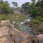 03 Viajefilos en Laos, Bolaven Plateau 113