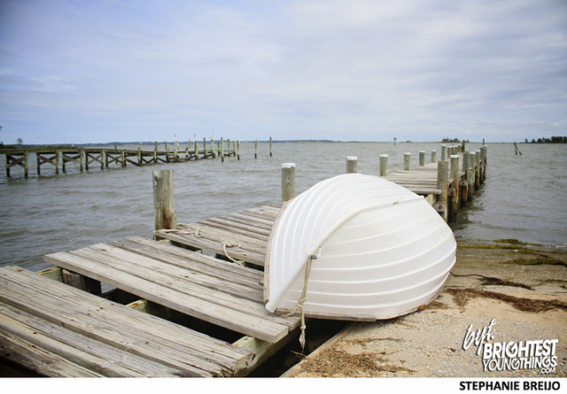 Rappahannock Regional Oysters VA Photos Brightest Young Things1