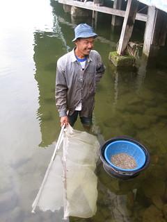 Padang - Maninjau Lake 6