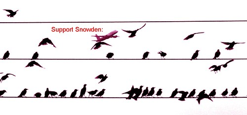 Support Snowden