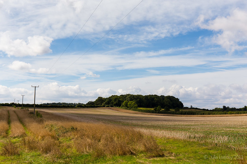 View towards The Oaks from Lambing Cottage