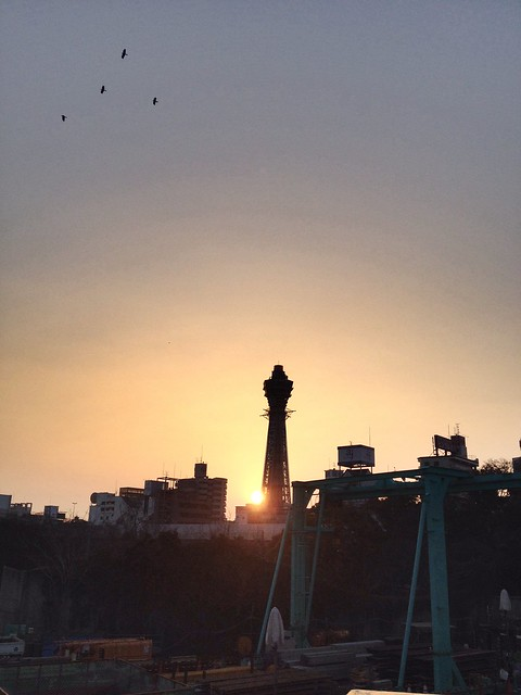 The Sunset and the tower