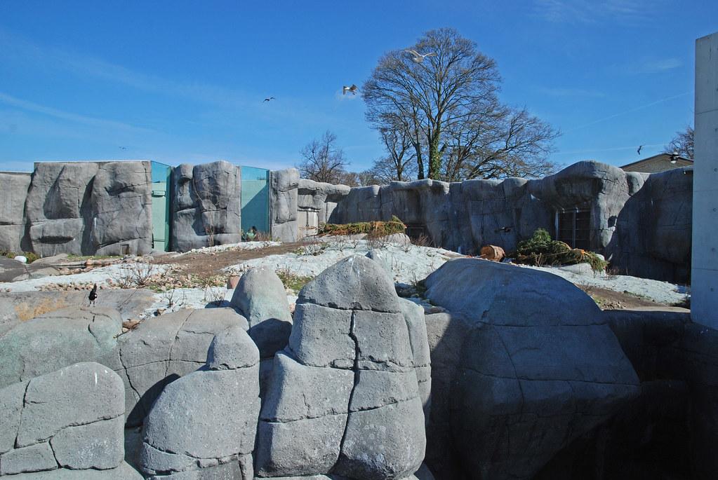 """København Zoo - Eisbärenanlage """"Den Arktiske Ring"""""""
